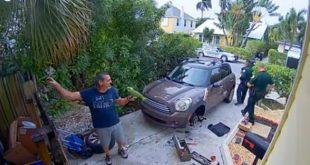 Gritaba «sáquenme de aquí», llegó la policía y resultó ser un loro (Video)