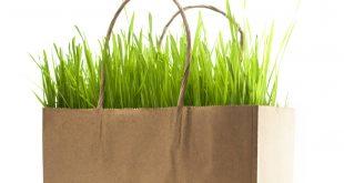 Bolsas de papel no son más ecologicas que las de plástico
