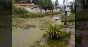 Lago de Valencia podría convertirse en un gran problema para quienes viven en las cercanías